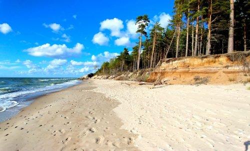 Supervoeding uit de Baltische staten - bosbessen, chaga, duindoorn en meer