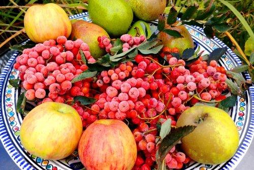 Rowan berry chutney with goji berries
