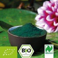 Spirulina Algen (Bio)