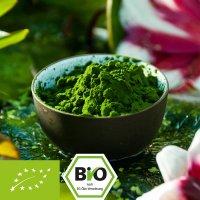 Chlorella Pulver aus Glasröhren Anbau in Portugal - kbA