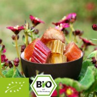 Organic rhubarb pieces - candied - sweet-sour