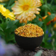 Spanish Bee pollen