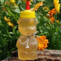Acacia honey in a traditional honey bear