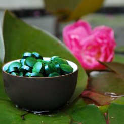 Premium Spirulina platensis tabletten