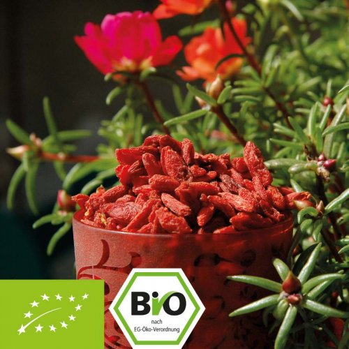 Organic Goji Berries - Premium quality