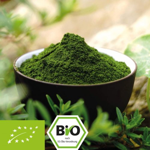 Organic barley grass juice powder