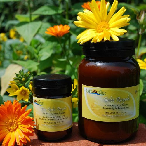 Royal Jelly - 1A beekeepers quality