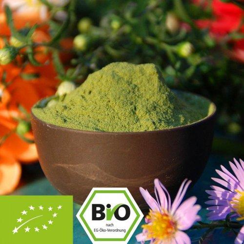 100% Bio Grünkohl Pulver ohne Zusätze