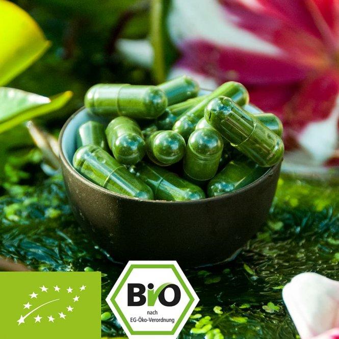 Organische Chlorella-capsules uit glazen buizen Teelt in Europa 225g Dose