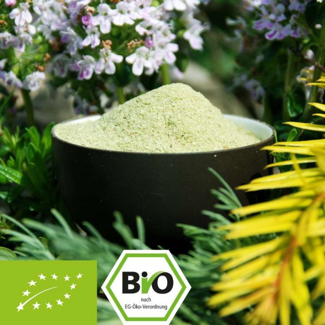 Spruce sprouts powder