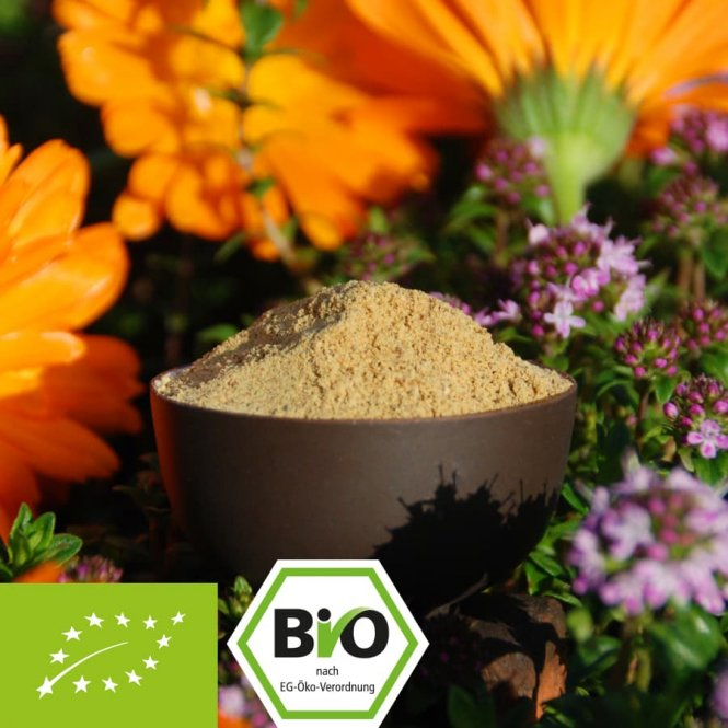 Organic pumpkin seed protein - 61% pure vegan protein 1000g