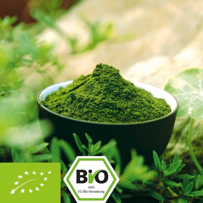 Biologisch Moringa oleifera poeder - 100% zuiver