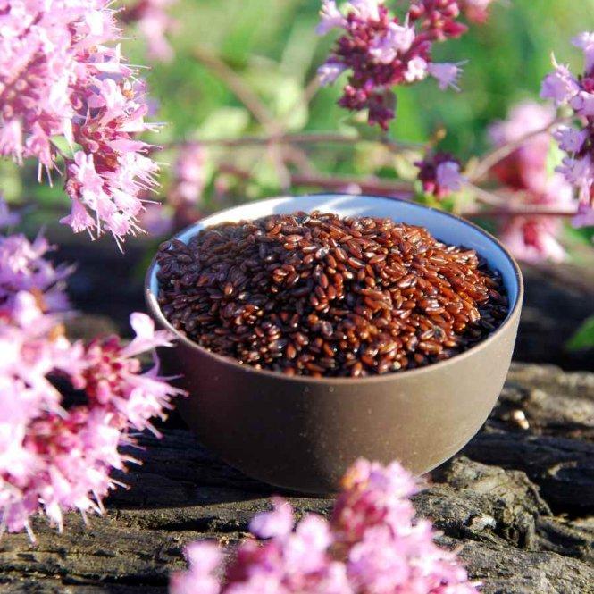 Psyllium Seeds, black 1 kg