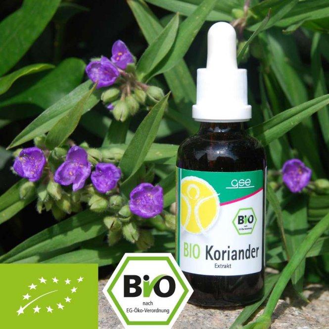 Organisch koriander-extract