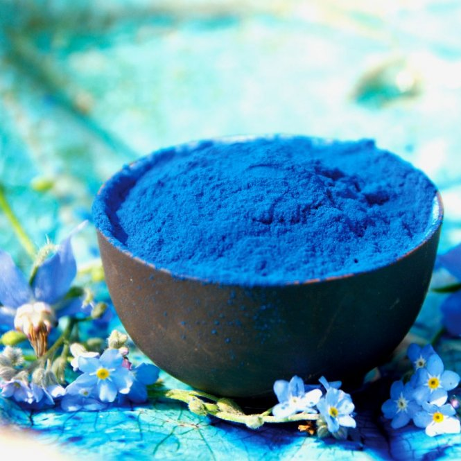 Spirulina-extractpoeder - fycocyanine - blauwe spirulina 100g