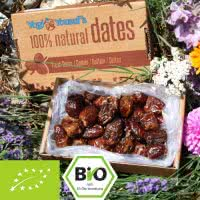 Organic Dates - Extra soft - sweet and smooth - with pits
