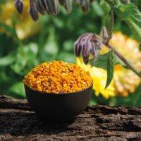 Blütenpollen aus Ungarn - 1A Imkerqualität