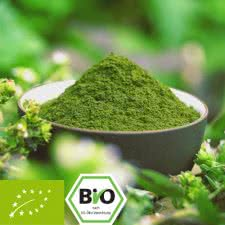 Organic Barley Grass - Premium quality - very fine milled
