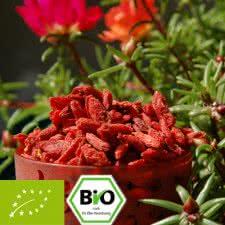 Bio Goji Beeren - Premiumqualität - kbA