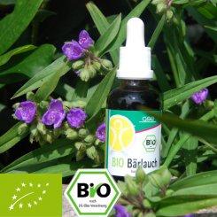 Organic wild garlic extract