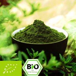 organic Moringa oleifera powder - 100% pure - premium quality