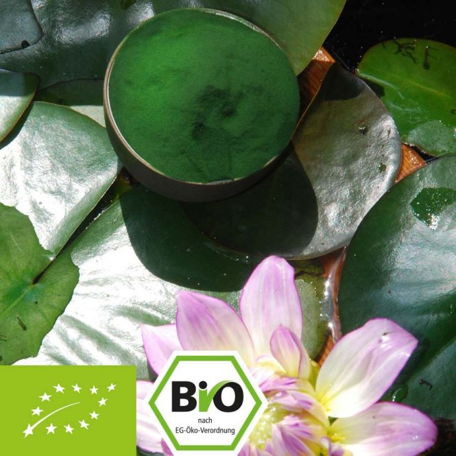 Organic Chlorella pyrenoidosa powder - certified 100% organic 500g
