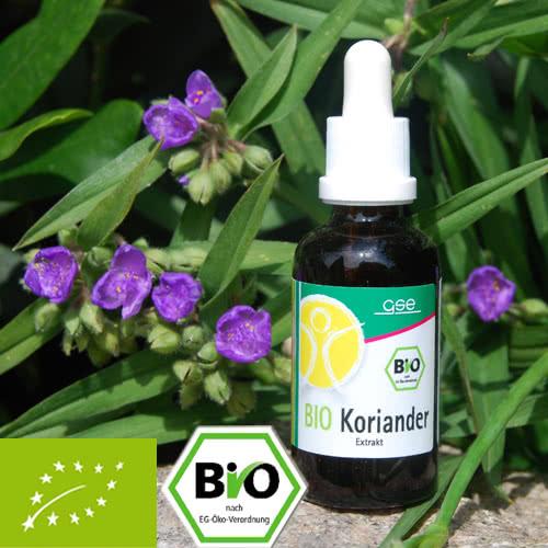 Organic cilantro extract