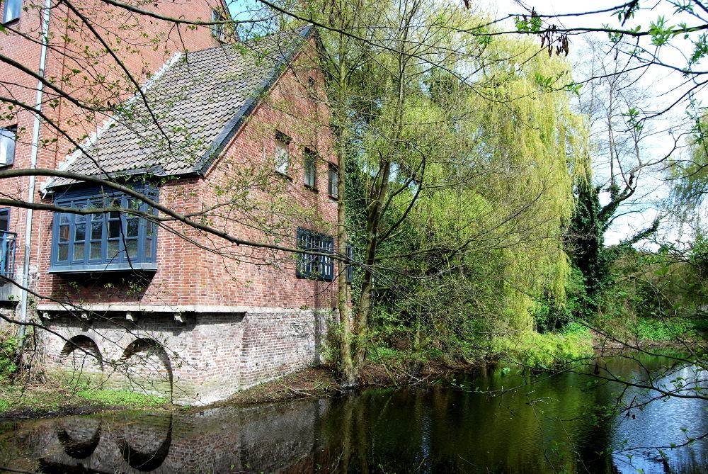 Aspermühle Teich